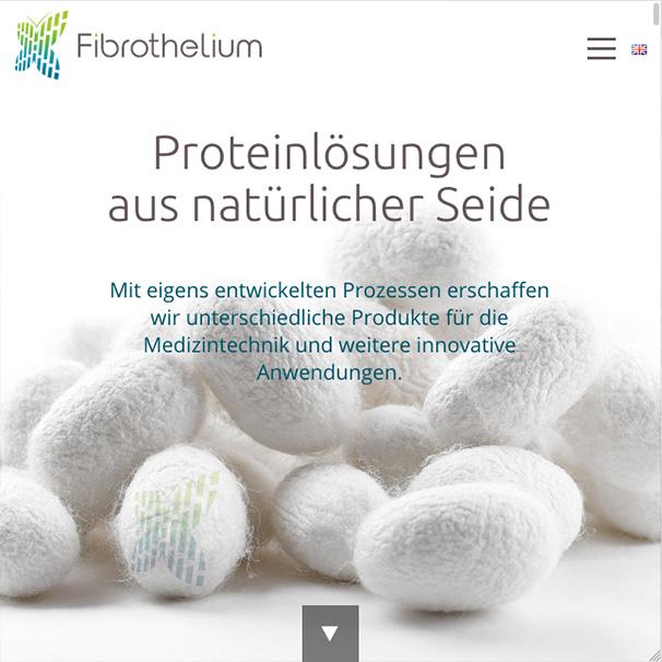 Ansicht der Website von Fibrothelium.