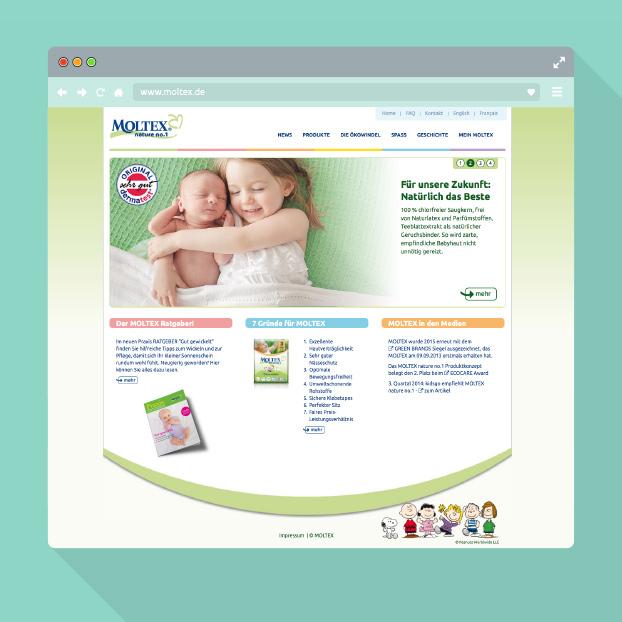Webdesign von Moltex