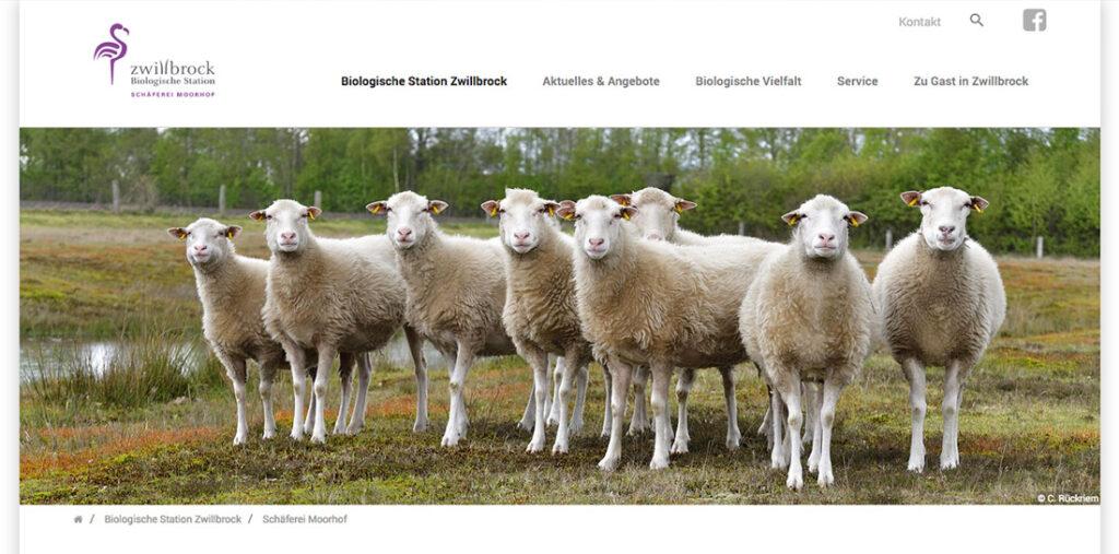 Mithilfe von Wappler Systems wurde die Website der Biologischen Station Zwillbrock relauncht, so dass alle Veranstaltungen und Angebote schnell zu finden sind.