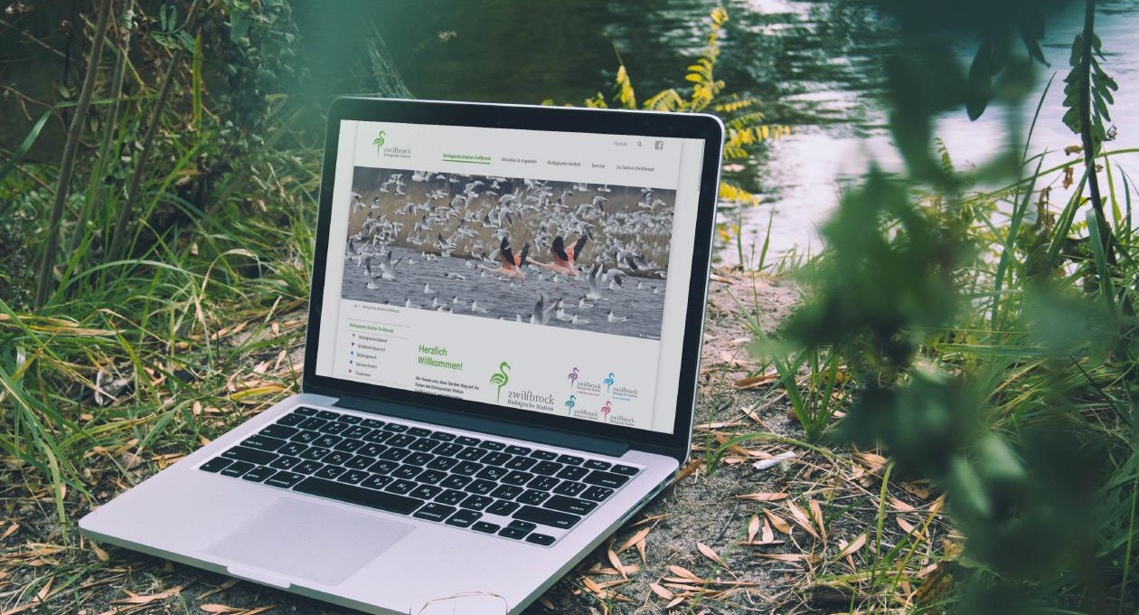 Ansicht der Website der Biologischen Station Zwillbrock auf einem Laptop, stehend an einem Seeufer.
