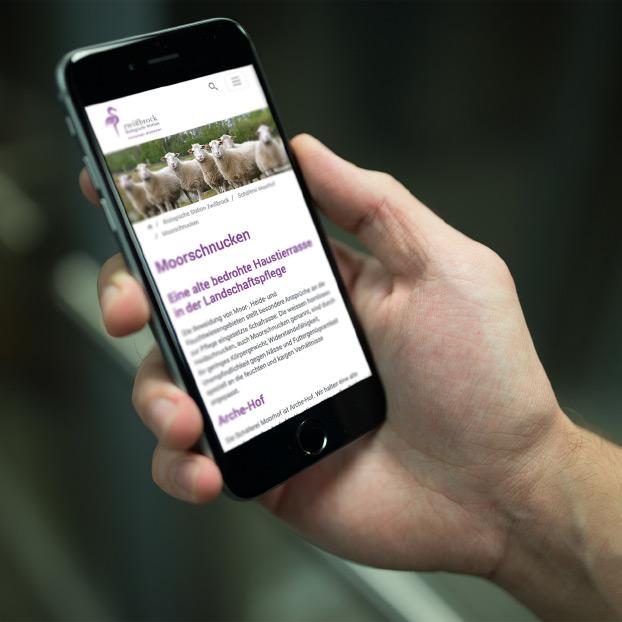 Ansicht der Website der Biologischen Station Zwillbrock auf einem Smartphone.